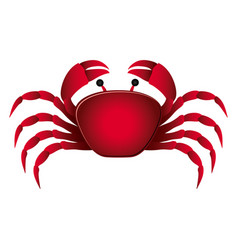 Colorful picture crab aquatic animal vector