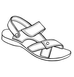 Sandal sketch vector