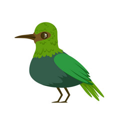 Small bright green tropical bird colorful vector