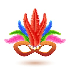 Orange carnival mask with feathers vector