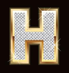 h bling bling vector image