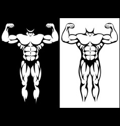 Male athletic body and muscules silhouettes vector