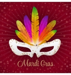 Mardi gras mask with colorful feathers vector
