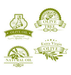 Olive oil product template icons set vector