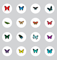 Realistic hairstreak sky animal copper and other vector