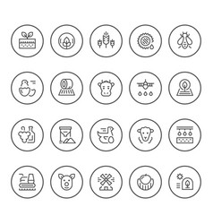 set round line icons of farming and agriculture vector image