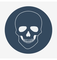 Single flat skull icon vector image vector image