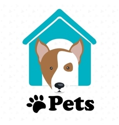 Dog pets house icon vector