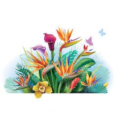 Arrangement with strelitzia flowers vector