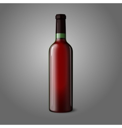 Blank green realistic bottle for red wine vector image
