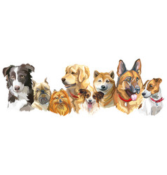 Dog breeds set vector
