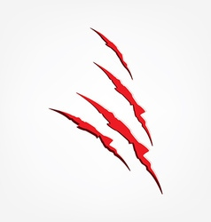 Red claw scratches vector