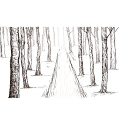Forest drawing vector