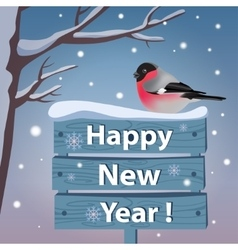 New year card with bullfinch vector