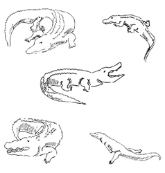 Crocodiles Sketch pencil Drawing by hand vector image vector image