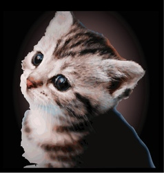 Happy kitten vector image