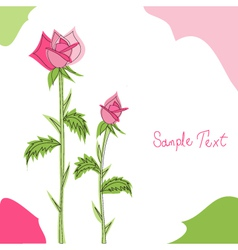 pink roses greeting card vector image