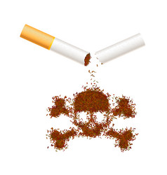 Broken realistic cigarette with tobacco leaves in vector