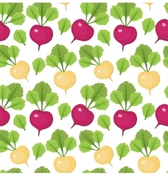 Radish seamless pattern Red and white radishes vector image vector image