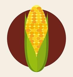 fresh corn design vector image