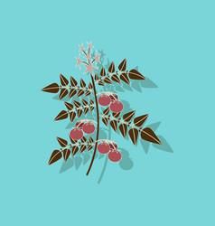 Paper sticker on stylish background tomato plant vector