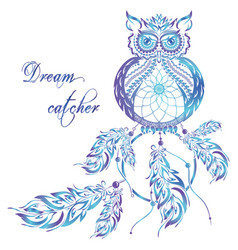 dream catcher owl blue background vector image