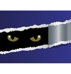 View on feline eyes vector