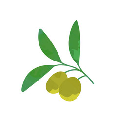 Cartoon olive branch with green foliage organic vector