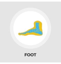 Foot anatomy flat icon vector