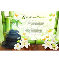 Spa and wellness background vector image