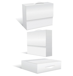 Blank case or box vector