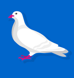 white bird sitting vector image vector image