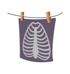X-Ray of a human rib cage cartoon icon vector image