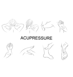 Point massage body parts vector