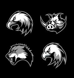 furious boar wolf panther and eagle head sport vector image