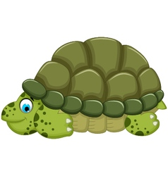 Cute turtle cartoon walking vector