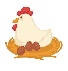 Big hen sits on straw nest with eggs vector