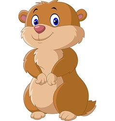 Cute Groundhog posing isolated on white background vector image vector image