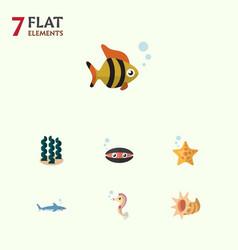 Flat icon sea set of alga hippocampus sea star vector