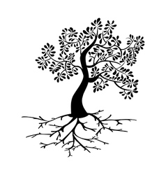 Black tree roots silhouette vector image
