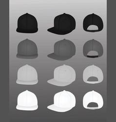 baseball caps vector image