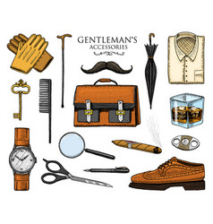 gentleman accessories set hipster or businessman vector image