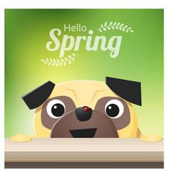 Hello spring season background with pug dog vector