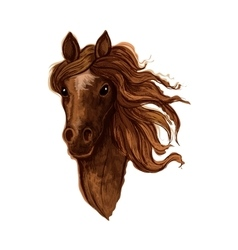 Sketch of brown arabian mare horse vector