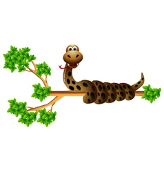 funny snak eon the tree vector image vector image