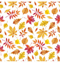 Watercolor autumn leaves pattern vector