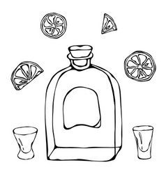 Whiskey cognac or brandy bottle and shot glass vector