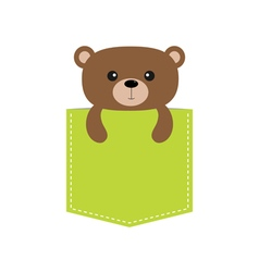 Bear in the pocket cute cartoon character dash vector