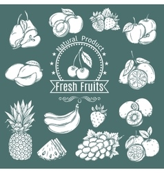 Set decorative Fruits and Berries vector image