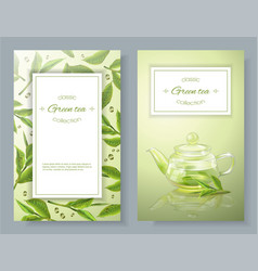 Green tea banners vector